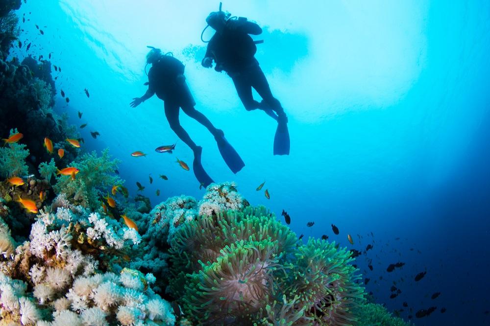 Krabi- Scuba-diving
