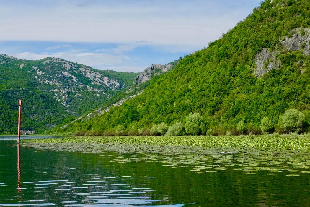 Skadar Lake