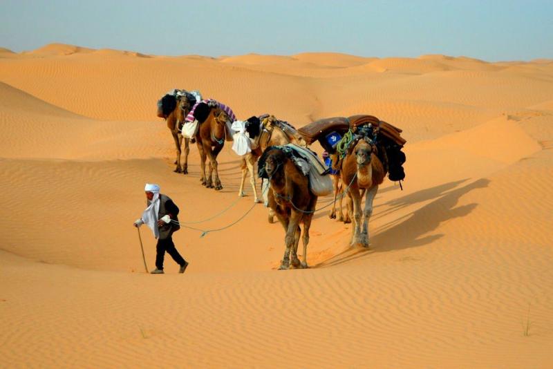 Marele Erg Oriental, Tunisia